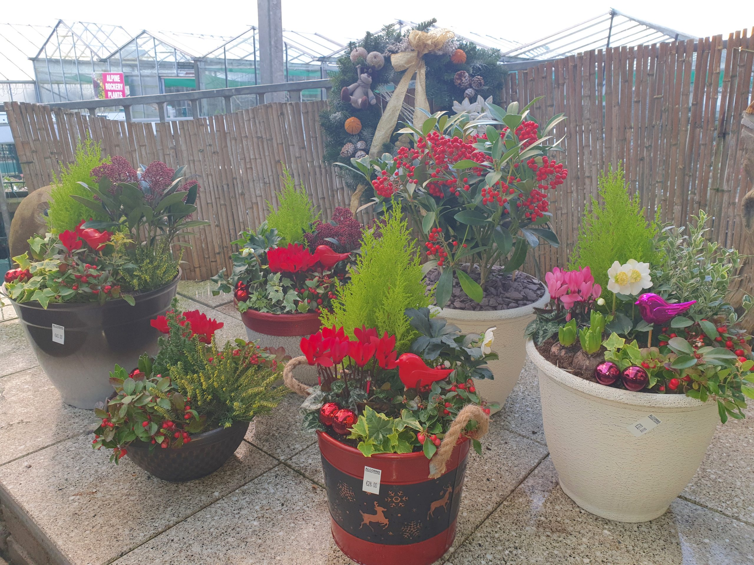Letterkenny Floriset